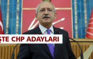 İşte CHP'nin Milletvekili Adayları