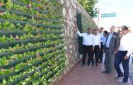 Yeşilyurt'ta Duvarlar Çiçek Açtı