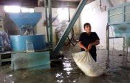 Darende'de Sağanak Yağış Su Baskınlarına Neden Oldu